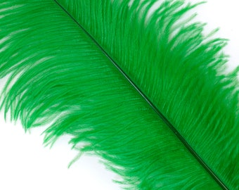 """KELLY 25 Ostrich Feathers 17""""- 20"""" - 25pc/pkg - Perfect for Feather Centerpieces,Party Decor,Millinery & Carnival Costumes ZUCKER®"""