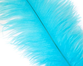 """LIGHT TURQUOISE 25 Ostrich Feathers 17""""- 20"""" - 25pc/pkg - Perfect for Feather Centerpieces,Party Decor,Millinery & Carnival Costumes ZUCKER®"""