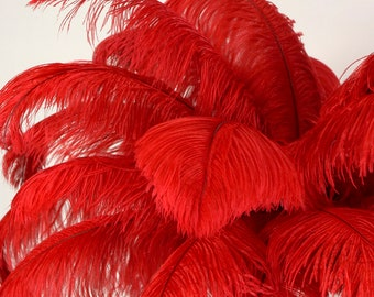 "Large Ostrich Feathers 25 Pieces 17-25"" Prime Ostrich Femina Wing Plumes RED, Wedding Centerpiece, Carnival Feathers ZUCKER® USA"