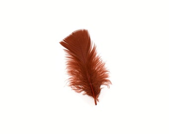 Turkey Feathers, Rust Loose Turkey Plumage Feathers, Short T-Base Body Feathers for Craft and Fly Fishing Supply ZUCKER®