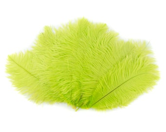 "Ostrich Feathers 9-12"" LIME Green, Ostrich Drabs, Centerpiece Floral Supplies, Carnival & Costume Feathers ZUCKER®Dyed and Sanitized USA"