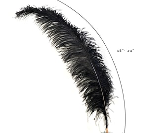"Ostrich Feathers, Black Ostrich Feather Spads 18-24"", Centerpiece Floral Supplies, Carnival & Costume Feathers ZUCKER®"