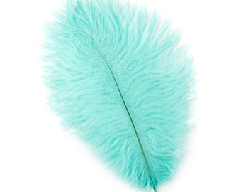 "MINT Bulk 9-12"" Ostrich Feathers 1/4LB - For Feather Centerpieces,Party Decor,Millinery,Carnival,Fashion & Costume Design ZUCKER®"