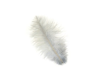 "12 SILVER Ostrich Feathers 9-12"" Perfect for Feather Small Feather Centerpieces, Party Decor, Millinery & Costume Design ZUCKER®"