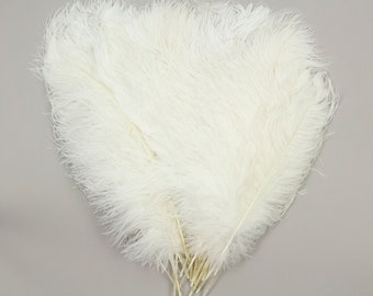 """White Ostrich Feather Tips, 15-18"""" Ostrich Tails 25 Pieces for Millinery and Floral Design, DIY Costume, Carnival, Mardi Gras ZUCKER®"""