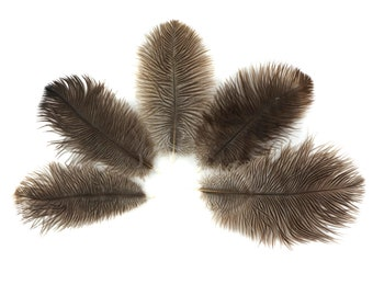 "Ostrich Feathers 4-6"" NATURAL, Mini Ostrich Drabs, Floral Bouquets, Boutonnieres, Small Centerpiece, Hat Trims ZUCKER®"