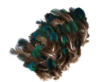Small Peacock Feathers, Natural Green Peacock Plumage, Loose Peacock Plumage Feathers, Small Green Peacock Plumage for Arts & Craft ZUCKER®