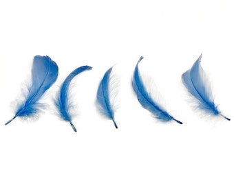 """Goose Nagoire Feathers, 4-6"""" Sky Blue Loose Goose Nagoire Feathers, Small Feathers, Arts and Craft Supplies ZUCKER®"""