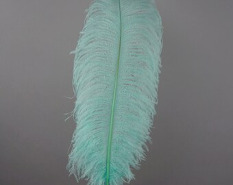 "12 MINT 17""+ Ostrich Feathers 1DZ - Perfect for Large Feather Centerpieces, Party Decor, Millinery, Carnival & Costume Design ZUCKER®"