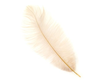 "12 BEIGE 13-16"" Ostrich Feathers - Perfect for Medium Feather Centerpieces & Bouquets, Party Decor, Millinery and Costume Design ZUCKER®"