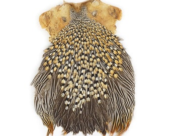 Unique Jungle Cock Feather Pelt Top Quality Exotic Natural Gold Rooster Feather Skin 1 Complete Cape Rare Fly Tying & Jewelry Supply ZUCKER®