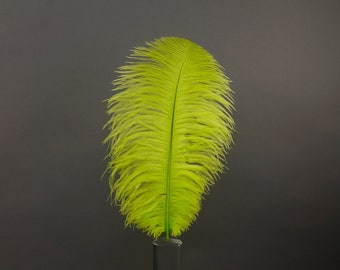 "12 LIME 17""+ Ostrich Feathers 1DZ - Perfect for Large Feather Centerpieces, Party Decor, Millinery, Carnival & Costume Design ZUCKER®"