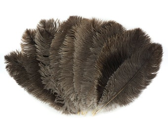"""Ostrich Feathers 13-16"""" NATURAL - For Feather Centerpieces,Party Decor,Millinery,Carnival,Fashion and Costume Design ZUCKER®"""