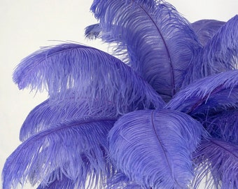 """Large Ostrich Feathers 25 Pieces 17-25"""" Prime Ostrich Femina Wing Plumes LAVENDER purple, Wedding Centerpiece, Carnival Feathers ZUCKER® USA"""
