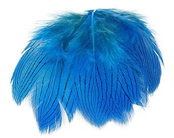 "Dark Turquoise Silver Pheasant Plumage, Unique Feathers, 1 DOZEN  2-4"", Dyed Silver Pheasant Barred Plumage ZUCKER® Dyed & Sanitized USA"