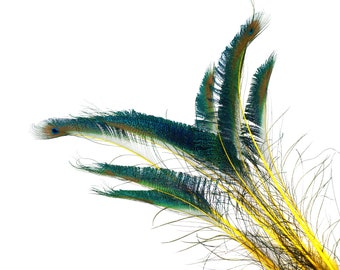 "YELLOW 10pc/pkg 15-25"" Stem Dyed Peacock Sword Feathers - For Arts & Crafts, Floral Decor, Millinery and Jewelry Design ZUCKER®"