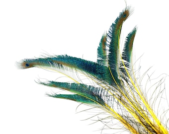 "Peacock Sword Stem Dyed Feathers, 10 to 100 pieces 15-25"" - YELLOW, Floral Decor, Millinery, Jewelry Design ZUCKER® Sanitized in USA"