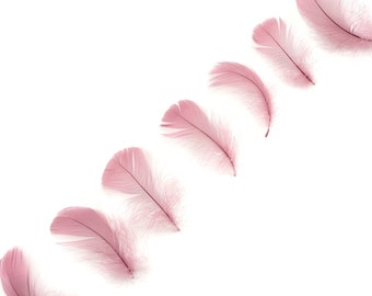 """Goose Coquille Feathers, 3-5"""" Dusty Rose Loose Goose Feathers, Small Feathers, Arts and Craft Supplies ZUCKER®"""