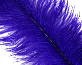 """REGAL 25 Ostrich Feathers 17""""- 20"""" - 25pc/pkg - Perfect for Feather Centerpieces,Party Decor,Millinery & Carnival Costumes ZUCKER®"""