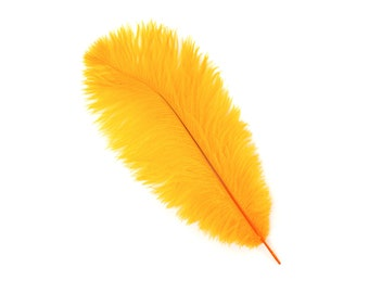 "12 MANGO 13-16"" Ostrich Feathers - Perfect for Medium Feather Centerpieces & Bouquets, Party Decor, Millinery and Costume Design ZUCKER®"