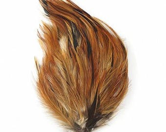Bulk Natural Furnace Hackle Feather Pads 1DZ P595F--N ZUCKER®