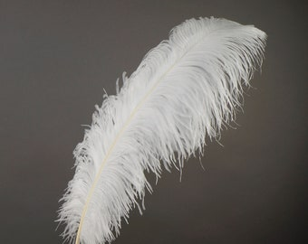 """WHITE 25 Large Ostrich Feathers 17-25"""" 25pc/pkg - For Feather Centerpieces, Party Decor, Millinery , Carnival , Costume ZUCKER®"""
