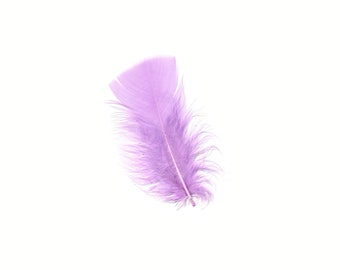 Turkey Feathers, Orchid Loose Turkey Plumage Feathers, Short T-Base Body Feathers for Craft and Fly Fishing Supply ZUCKER®