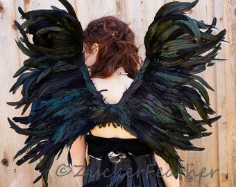 Medium Blackbird Costume Feather Wings  -  ZUCKER® Feather Place Original Designs - Unique Premium Fantasy Feather Costume & Cosplay Wings