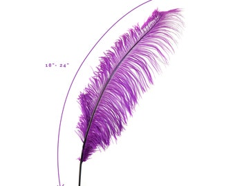"Ostrich Feathers, Purple Ostrich Feather Spads 18-24"", Centerpiece Floral Supplies, Carnival & Costume Feathers ZUCKER®"