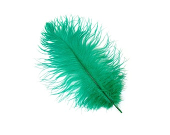 "12 EMERALD 13-16"" Ostrich Feathers - Perfect for Medium Feather Centerpieces & Bouquets, Party Decor, Millinery and Costume Design ZUCKER®"