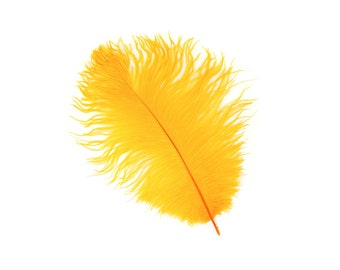 "12 MARIGOLD Ostrich Feathers 9-12"" Perfect for Feather Small Feather Centerpieces, Party Decor, Millinery & Costume Design ZUCKER®"
