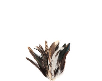 """NATURAL Rooster Feathers, 8-10"""" Barred Rooster Feathers, 25pcs Rooster Coque Tails For Arts & Crafts, DIY, Millinery, Costume Design ZUCKER®"""