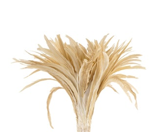 "BEIGE 16-18"" Bulk Bleach-Dyed Rooster Coque Tail Feathers Strung by the 1/4lb For Cultural Arts, Carnival & Costume Design ZUCKER®"