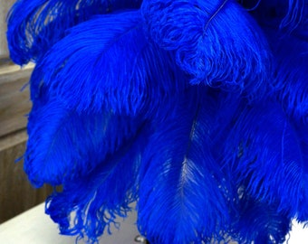 "Ostrich Feathers 17-20"" ROYAL, 1 to 25 pcs, Ostrich Plumes, Carnival Samba, Ostrich Drab, Mardi Gras, Centerpieces, Feather Fan, ZUCKER® USA"