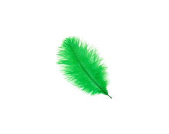 "KELLY 4-8"" Bulk Ostrich Feathers 1/4LB - For Feather Centerpieces, Party Decor, Millinery, Fashion & Costume Design ZUCKER®"