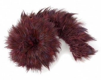 1 YARD RASPBERRY Almond Ringneck Pheasant Plumage - For Millinery, Jewelry Making, Carnival & Cultural Arts Design  ZUCKER®
