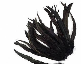 "12-14"" Black Rooster Coque Feathers - BCCHBL12-14--BL-IRID (25 piece pkg) ZUCKER®"