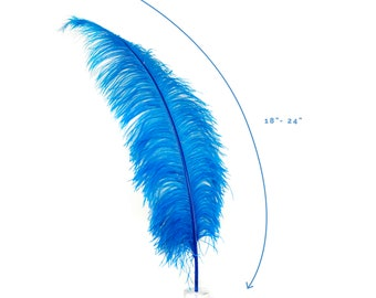 "Ostrich Feathers, Dark Turquoise Ostrich Feather Spads 18-24"", Centerpiece Floral Supplies, Carnival & Costume Feathers ZUCKER®"