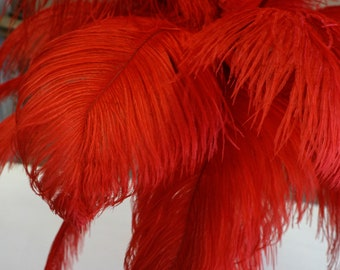 "Ostrich Feathers 17-20"" RED, 1 to 25 pcs, Ostrich Plumes, Carnival Samba, Ostrich Drab, Mardi Gras, Centerpieces, Feather Fan, ZUCKER® USA"