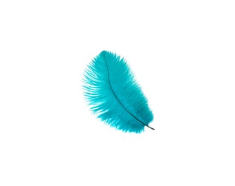 "12 DK.AQUA 4-6"" Ostrich Feathers Perfect for Floral Bouquets & Small Feather Centerpieces, Party Decor, Millinery and Costume Design ZUCKER®"