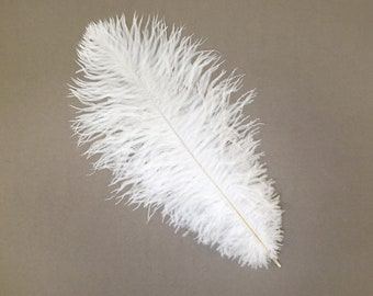 "12 WHITE 13-16"" Ostrich Feathers - Perfect for Medium Feather Centerpieces & Bouquets, Party Decor, Millinery and Costume Design ZUCKER®"