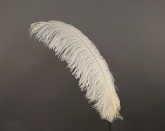"12 IVORY 17""+ Ostrich Feathers 1DZ - Perfect for Large Feather Centerpieces, Party Decor, Millinery, Carnival & Costume Design ZUCKER®"