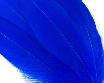 "BULK 6-8"" ROYAL Loose Dyed Goose Pallet Feathers - For Arts, Crafts, Dream Catcher, Millinery, Carnival, Costume & Cosplay Design ZUCKER®"