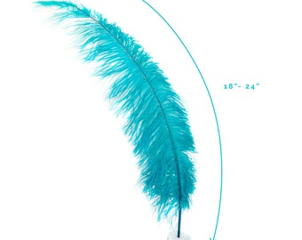 "Ostrich Feathers, Dark Aqua Ostrich Feather Spads 18-24"", Centerpiece Floral Supplies, Carnival & Costume Feathers ZUCKER®"