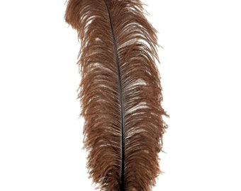 "BROWN 25 Large Ostrich Feathers 17-25"" 25pc/pkg - For Feather Centerpieces, Party Decor, Millinery , Carnival , Costume ZUCKER®"
