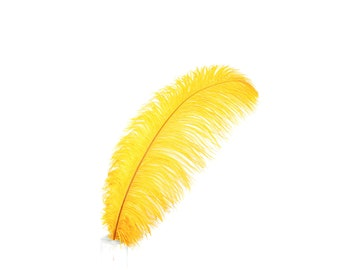 "12 MARIGOLD 17""+ Ostrich Feathers 1DZ - Perfect for Large Feather Centerpieces, Party Decor, Millinery, Carnival & Costume Design ZUCKER®"