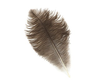 """NATURAL Bulk 13-16"""" Ostrich Feathers 1/4LB - For Feather Centerpieces,Party Decor,Millinery,Carnival,Fashion and Costume Design ZUCKER®"""