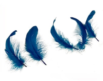 "Goose Nagoire Feathers, 4-6"" Dark Turquoise Loose Goose Nagoire Feathers, Small Feathers, Arts and Craft Supplies ZUCKER®"