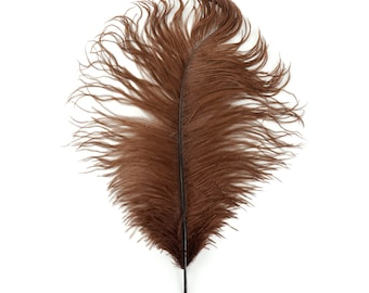 "12 BROWN 17""+ Ostrich Feathers 1DZ - Perfect for Large Feather Centerpieces, Party Decor, Millinery, Carnival & Costume Design ZUCKER®"
