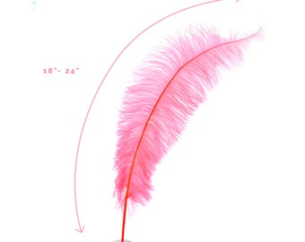 "Ostrich Feathers, Coral Ostrich Feather Spads 18-24"", Centerpiece Floral Supplies, Carnival & Costume Feathers ZUCKER®"